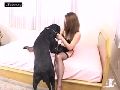 Porn woman dog Housewife is